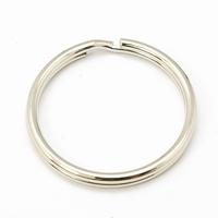 Sleutel ring  platina