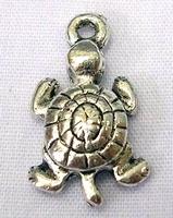 Schildpad verpakt per