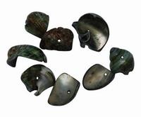 Zee schelpjes donker groen