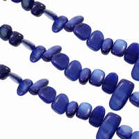 Zoetwater schelp geslepen donker blauw