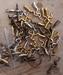 Ronde acryl kraal helder oranje