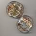 Zilver kraal briun/goud plat rond