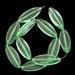 Ovaal  Groen/licht