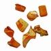 Zee schelpjes oranje