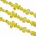 Zoetwater schelp geslepen geel
