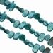 Zoetwater schelp geslepen  turquoise