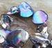 Schelpkraal donker turquoise